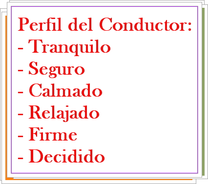 perfilconductor1